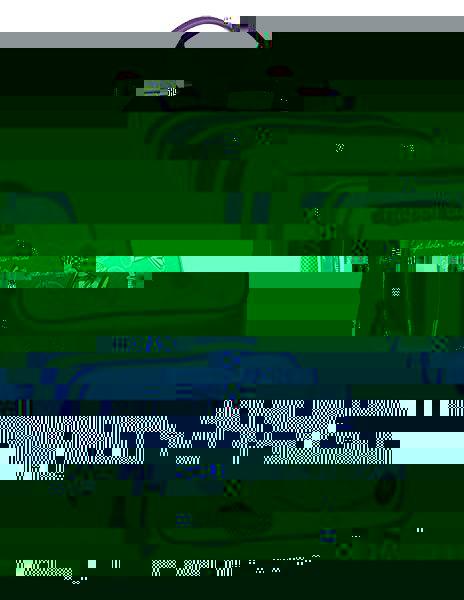 Dívčí školní batoh pro prvňáčky BAGMASTER GALAXY 9 A GRAY/VIOLET, kočka, kočička, koťátko, kočkovitý, kočka