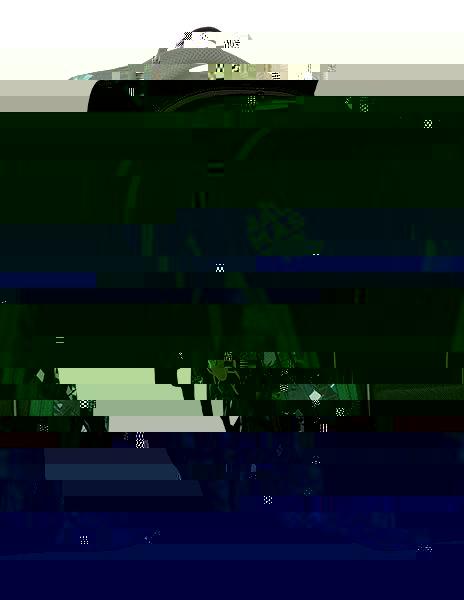 Studentský batoh Bagmaster BAG 9 E GREEN/GRAY/BLACK