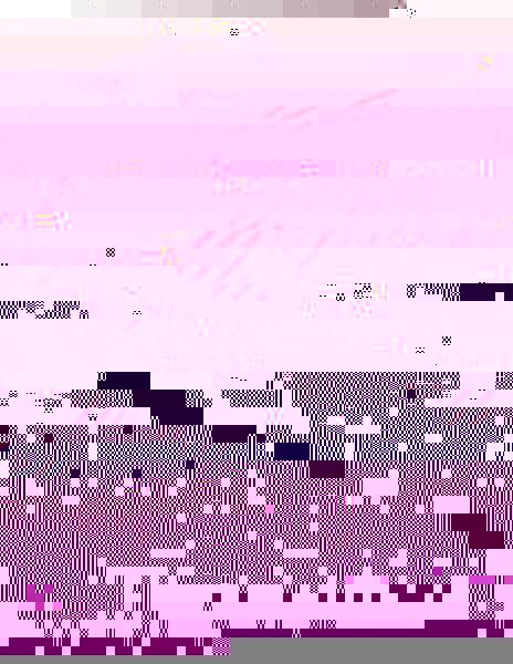 Studentský batoh DIGITAL 0215 C BLACK/BROWN/WHITE - Doprava zdarma, Výprodej 8591805006745