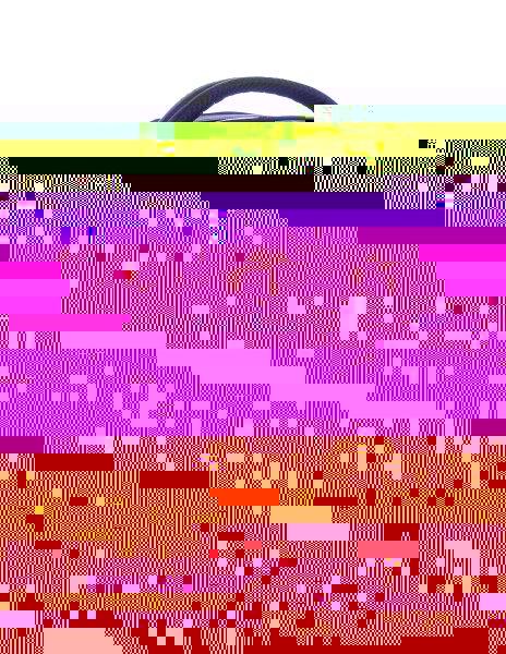 Bagmaster Dívčí školní batoh pro 3.třídu ORION 0115 A BLACK/COLOURS - Výprodej