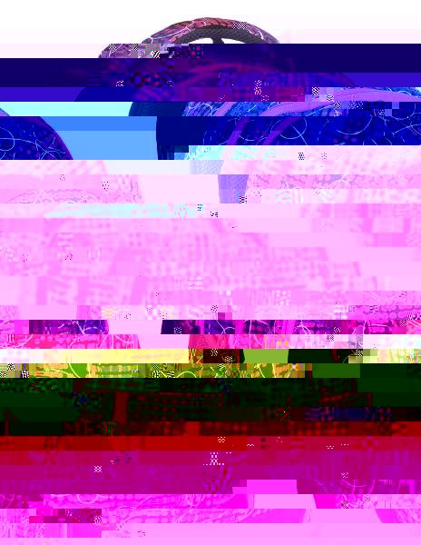 Studentský batoh Bagmaster DIGITAL 7 B PINK/VIOLET 8591805007599