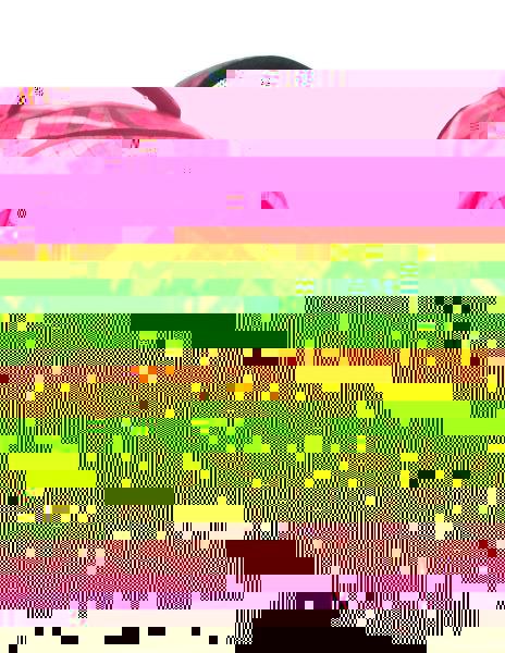 Studentský batoh dívčí FUNNY 0115 B PINK - Výprodej 8591805006912