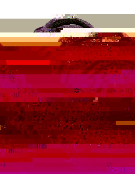 Studentský batoh NIE 0115 C VIOLET Bagmaster - Doprava zdarma 8591805006707