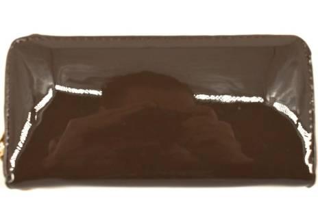 Dámská / dívčí lakovaná peněženka  pouzdrového typu