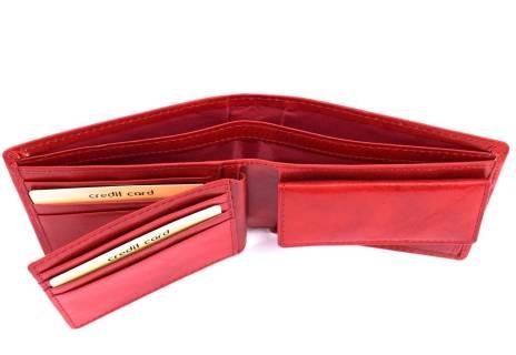 Pánská kožená peněženka Arteddy