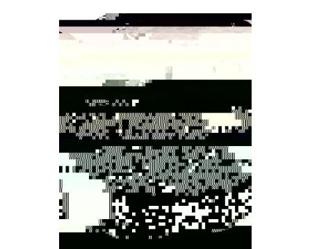 Městský batoh stylový BAGMASTER LINDER 9 B CAMO